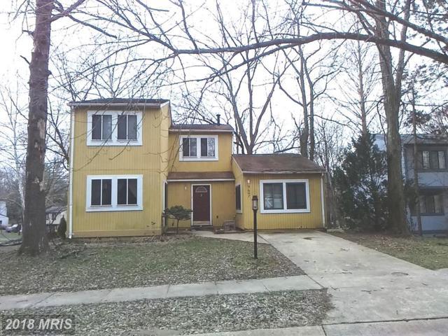 9607 Rocksparkle Row, Columbia, MD 21045 (#HW10216289) :: Wilson Realty Group