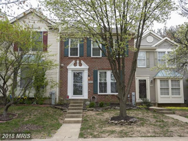 7979 Brightmeadow Court, Ellicott City, MD 21043 (#HW10219331) :: Advance Realty Bel Air, Inc