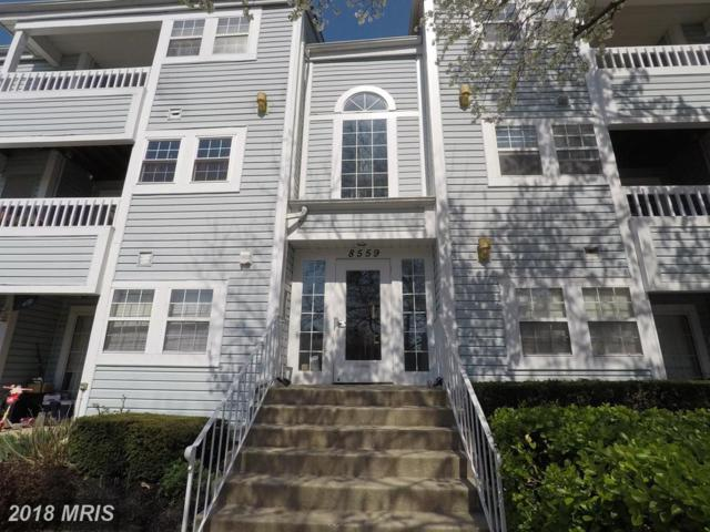 8559 Falls Run Road J, Ellicott City, MD 21043 (#HW10219920) :: ExecuHome Realty