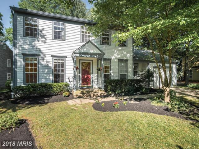 4622 Smokey Wreath Way, Ellicott City, MD 21042 (#HW10232501) :: The Maryland Group of Long & Foster