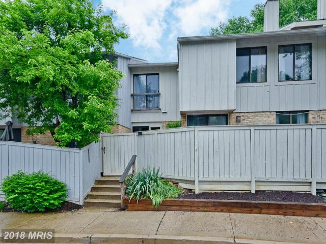 11233 Powder Run 10-3, Columbia, MD 21044 (#HW10238738) :: Frontier Realty Group