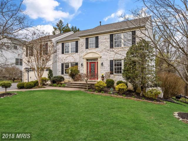 4935 Clearwater Drive, Ellicott City, MD 21043 (#HW10247319) :: The Sebeck Team of RE/MAX Preferred