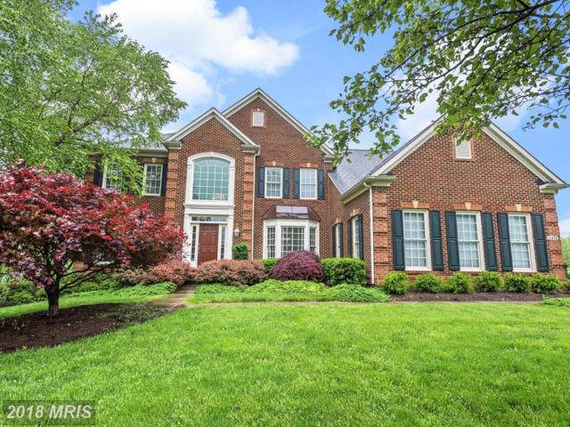 11428 Butterfruit Way, Ellicott City, MD 21042 (#HW10247442) :: The Sebeck Team of RE/MAX Preferred