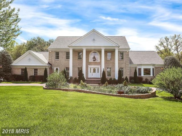 1710 Willow Springs Drive, Sykesville, MD 21784 (#HW10248014) :: Wes Peters Group