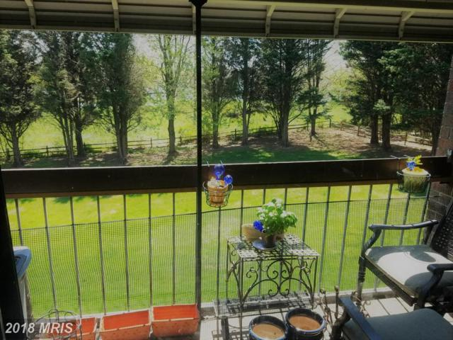 8723 Hayshed Lane #33, Columbia, MD 21045 (#HW10249087) :: ExecuHome Realty