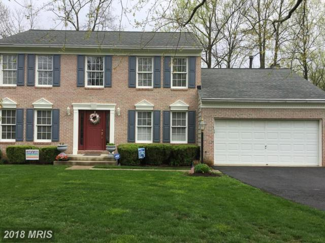 3007 Wooded Knoll Court, Ellicott City, MD 21042 (#HW10251231) :: The Maryland Group of Long & Foster
