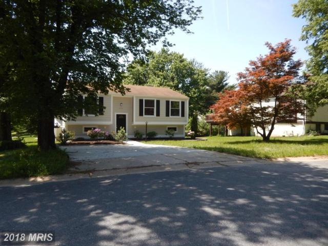 6684 Hawkeye Run, Columbia, MD 21044 (#HW10251993) :: The Maryland Group of Long & Foster