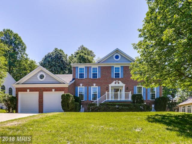 8394 Autumn Rust Road, Ellicott City, MD 21043 (#HW10252357) :: The Maryland Group of Long & Foster