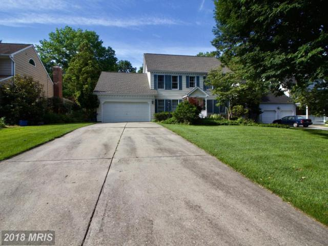 4229 Blue Barrow Ride, Ellicott City, MD 21042 (#HW10272614) :: ExecuHome Realty