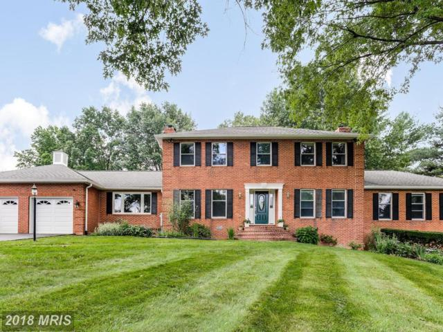 12209 Mount Albert Road, Ellicott City, MD 21042 (#HW10273573) :: The Bob & Ronna Group