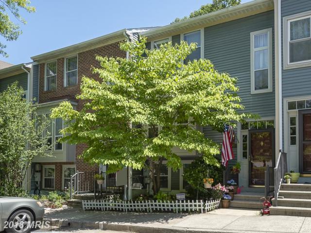 8205 Tall Trees Court, Ellicott City, MD 21043 (#HW10274395) :: The Miller Team