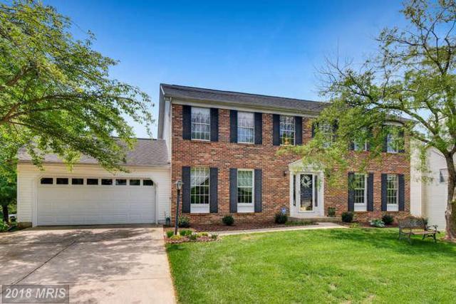 6423 Summer Cloud Way, Columbia, MD 21045 (#HW10276053) :: Keller Williams Pat Hiban Real Estate Group