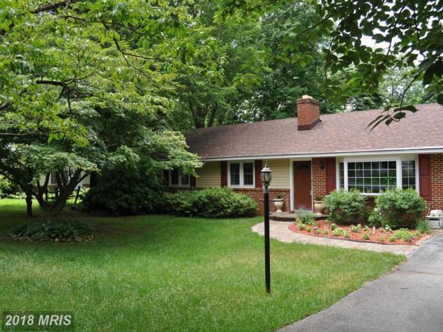 10114 Maplewood Drive, Ellicott City, MD 21042 (#HW10278017) :: Keller Williams Pat Hiban Real Estate Group
