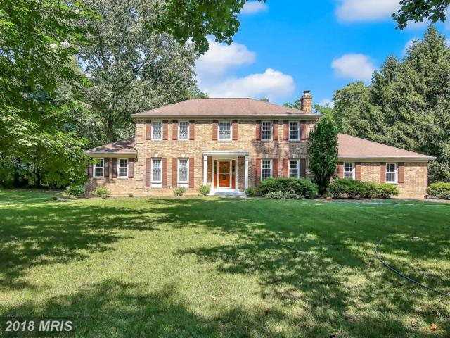 10726 Cleos Court, Columbia, MD 21044 (#HW10293186) :: The Sebeck Team of RE/MAX Preferred