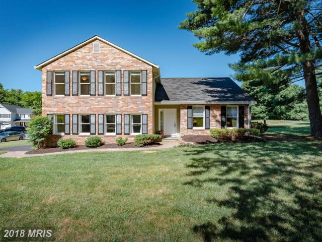 4208 Hermitage Drive, Ellicott City, MD 21042 (#HW10297612) :: The Speicher Group of Long & Foster Real Estate
