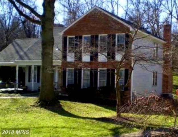 9233 Osprey Court #9233, Columbia, MD 21045 (#HW10300539) :: Keller Williams Pat Hiban Real Estate Group
