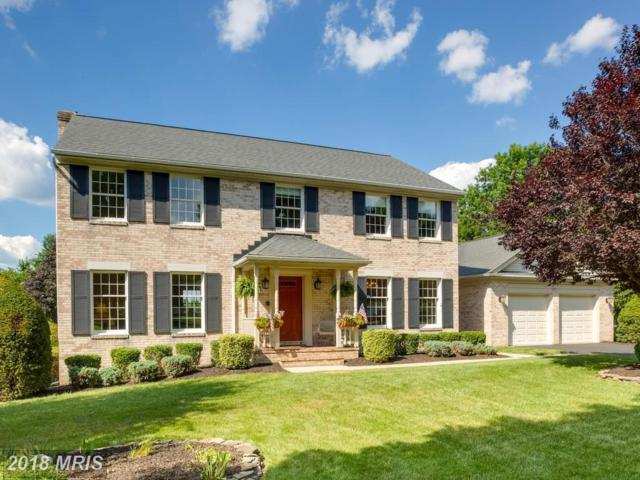 3723 Valerie Carol Court, Ellicott City, MD 21042 (#HW10303569) :: The Sebeck Team of RE/MAX Preferred