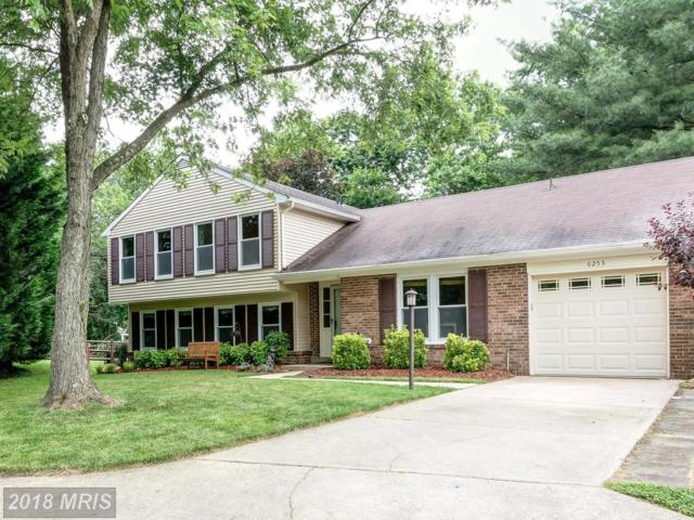 6253 Golden Coin Court, Columbia, MD 21045 (#HW10303641) :: The Sebeck Team of RE/MAX Preferred