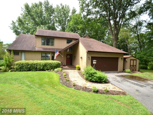 14685 Mustang Path, Glenwood, MD 21738 (#HW10308063) :: Bob Lucido Team of Keller Williams Integrity