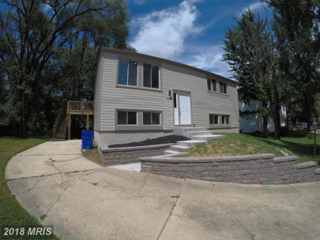 6347 Rainprint Row, Columbia, MD 21045 (#HW10320971) :: Wilson Realty Group