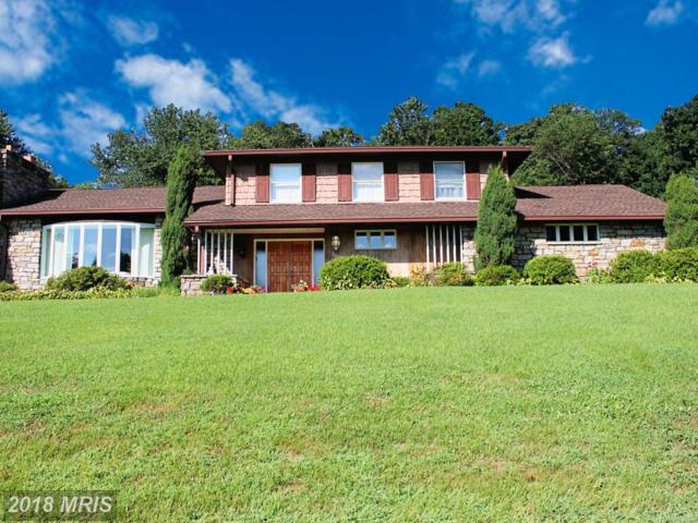 1050 Sunset Valley Drive, Sykesville, MD 21784 (#HW10322023) :: The Miller Team