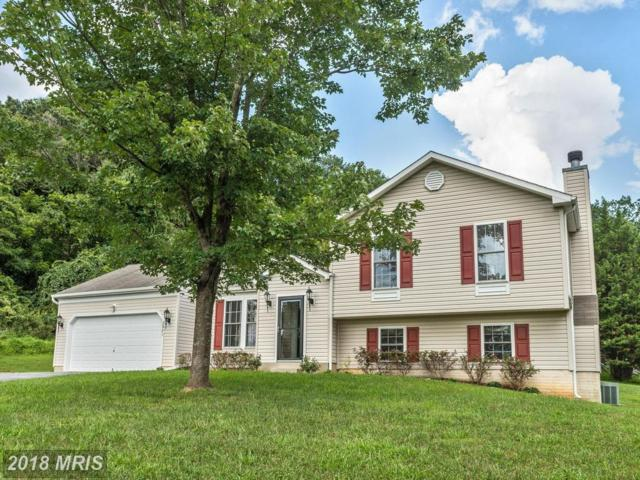 2971 Rogers Avenue, Ellicott City, MD 21043 (#HW10322786) :: Bob Lucido Team of Keller Williams Integrity