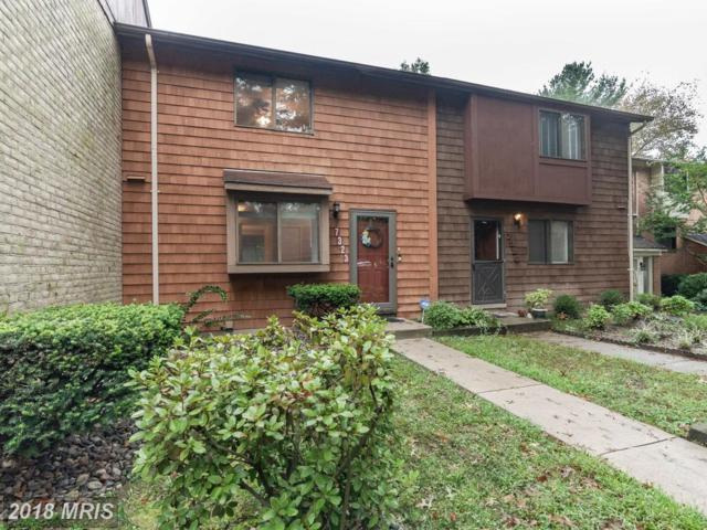 7323 Kerry Hill Court, Columbia, MD 21045 (#HW10330169) :: Browning Homes Group