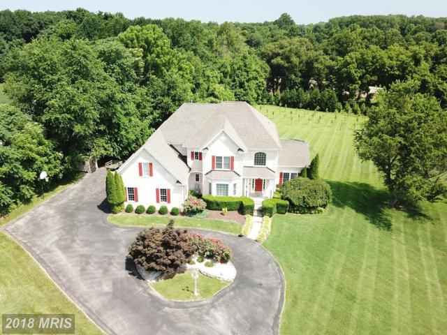 5943 Clifton Oaks Drive, Clarksville, MD 21029 (#HW10346453) :: The Sebeck Team of RE/MAX Preferred