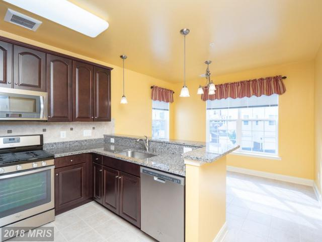 8511 Coltrane Court #202, Ellicott City, MD 21043 (#HW10346470) :: The Sebeck Team of RE/MAX Preferred