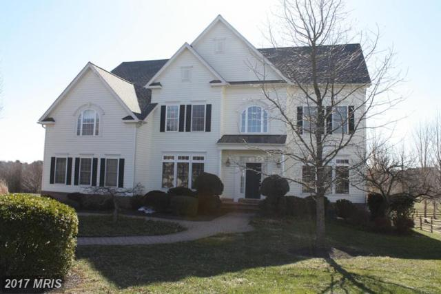3616 Clear Drive Court, Glenwood, MD 21738 (#HW9894773) :: LoCoMusings