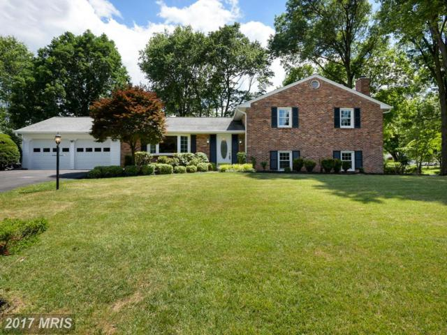 6293 Amherst Avenue, Columbia, MD 21046 (#HW9977147) :: Pearson Smith Realty