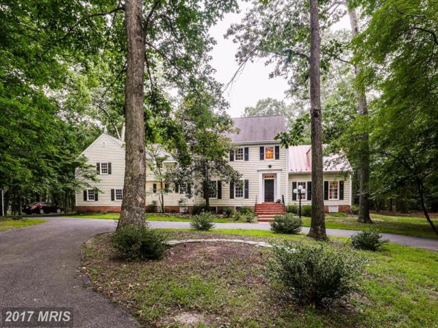 10370 Buglenote Way, Columbia, MD 21044 (#HW9998204) :: Pearson Smith Realty