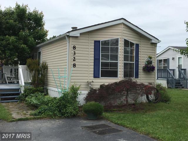 8328 Peachwood Drive, Jessup, MD 20794 (#HW9998435) :: LoCoMusings