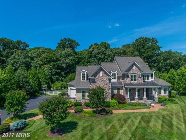 14412 Meadow Mill Way, Glenwood, MD 21738 (#HW9998639) :: Keller Williams Pat Hiban Real Estate Group