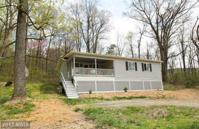 144 Muskrat Run, Harpers Ferry, WV 25425 (#JF10009173) :: Pearson Smith Realty