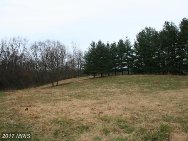 Macbeth Drive, Charles Town, WV 25414 (#JF10077757) :: Pearson Smith Realty