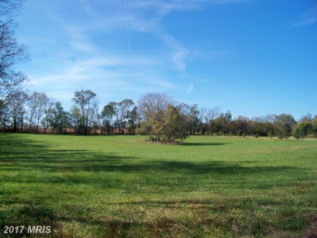 Trough Bend, Shepherdstown, WV 25443 (#JF10086403) :: Pearson Smith Realty
