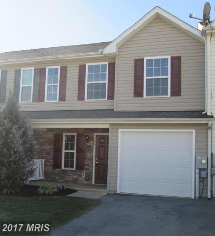 100 Fuzzy Tail Drive, Ranson, WV 25438 (#JF10087216) :: The Tom Conner Team
