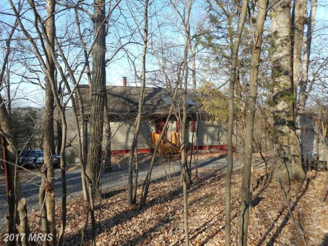 325 Long Leaf Lane, Harpers Ferry, WV 25425 (#JF10115272) :: Pearson Smith Realty