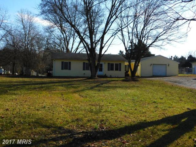 249 Black Walnut Drive, Kearneysville, WV 25430 (#JF10121231) :: Pearson Smith Realty