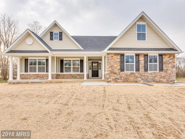 Chicory Court, Shepherdstown, WV 25443 (#JF10134390) :: Pearson Smith Realty