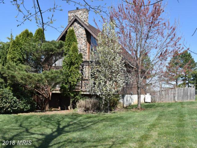 375 Palomino Place, Charles Town, WV 25414 (#JF10212915) :: Hill Crest Realty