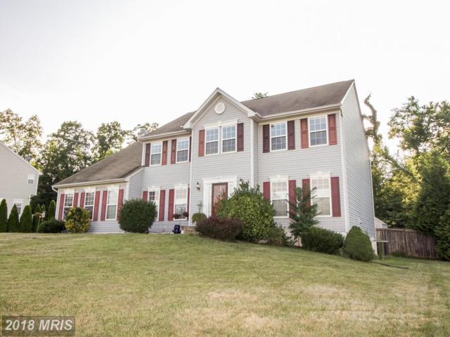 49 Appomattox Lane, Shepherdstown, WV 25443 (#JF10299891) :: Bob Lucido Team of Keller Williams Integrity