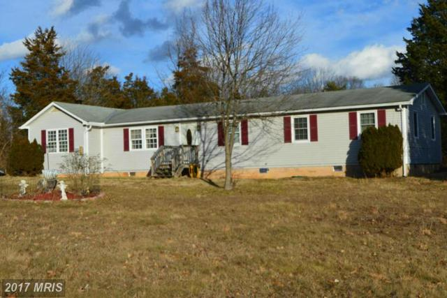 796 Hidden Hollow Drive, Kearneysville, WV 25430 (#JF9852668) :: LoCoMusings