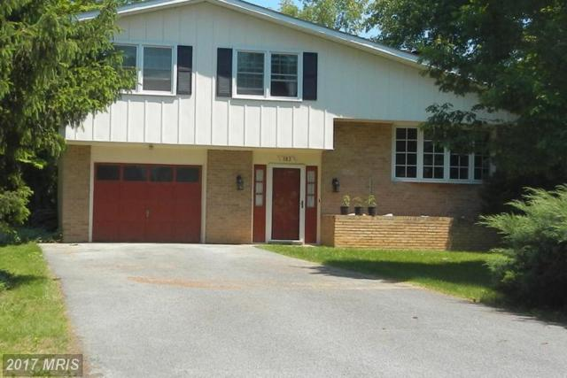 383 Berridge Drive, Shepherdstown, WV 25443 (#JF9949794) :: LoCoMusings