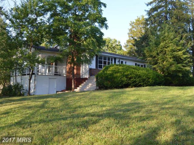6075 Martinsburg Pike, Shepherdstown, WV 25443 (#JF9998775) :: LoCoMusings