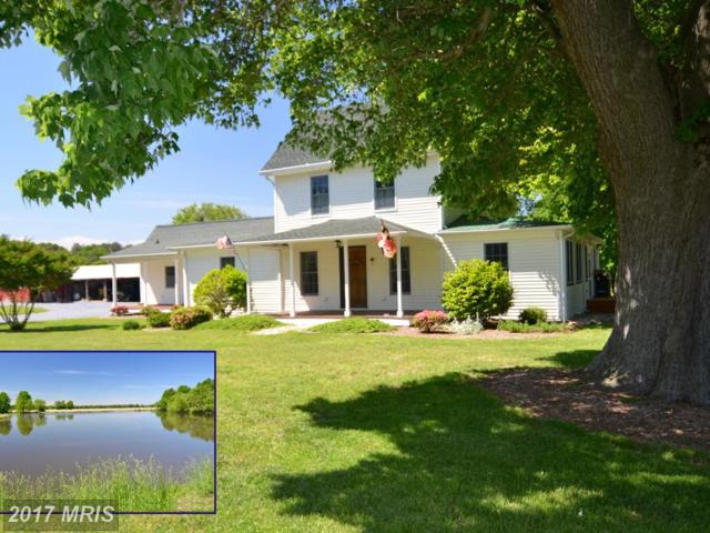 6542 Rock Hall Road, Rock Hall, MD 21661 (#KE10000337) :: Pearson Smith Realty