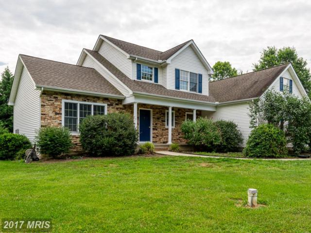 804 Meadowview Drive S, Chestertown, MD 21620 (#KE10004132) :: Pearson Smith Realty