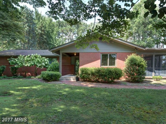 25800 Collins Avenue, Chestertown, MD 21620 (#KE10010130) :: Pearson Smith Realty