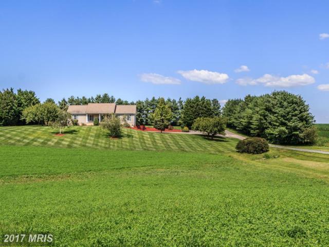11479 Still Pond Road, Worton, MD 21678 (#KE10031057) :: Pearson Smith Realty